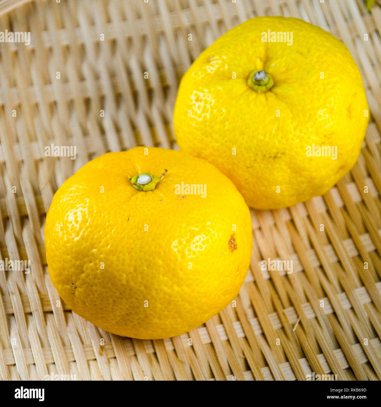 Two yuzu fruits (a sour and fragrant Japanese citrus variety) on a woven basket - Stock Image