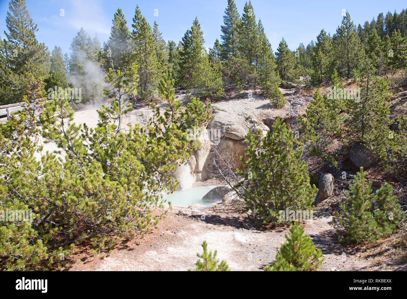 Norris Geyser Basin In The Yellowstone National Park Usa