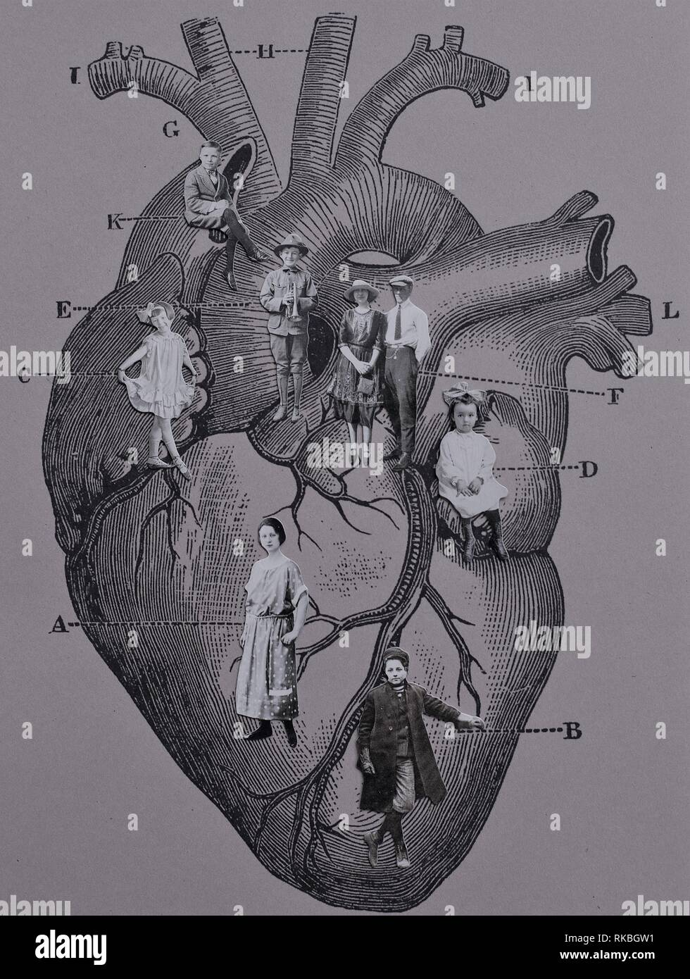 An anatomical heart with lines pointing to various people representing ancestors. - Stock Image