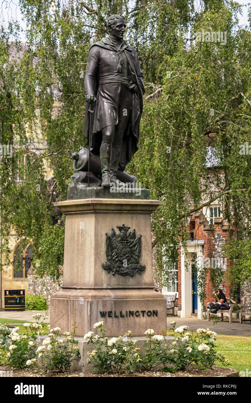 NORWICH, NORFOLK:  Statue of the Duke of Wellington in the grounds of the Cathedral - Stock Image