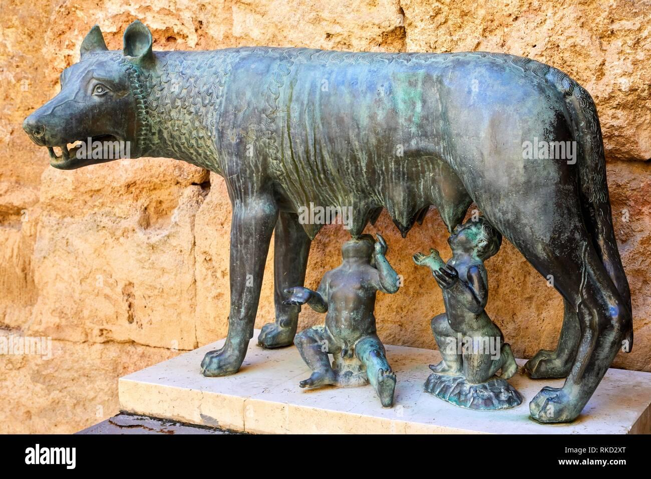 Augustus Palace, Rome Symbol, The wolf and Romulus and Remus, Praetorium and Roman Circus, History Museum of Tarragona (MHT), Tarragona City, - Stock Image