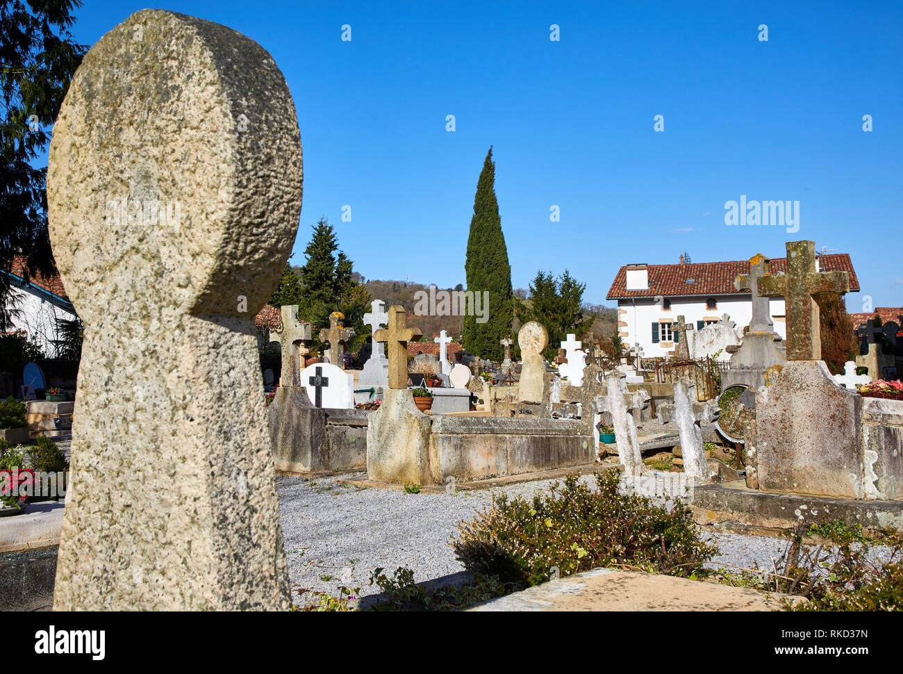 Discoidal steles Basque, Funeral steles, Cemetery, Sara, Pyrénées-Atlantiques department, Aquitaine region, France, Europe - Stock Image