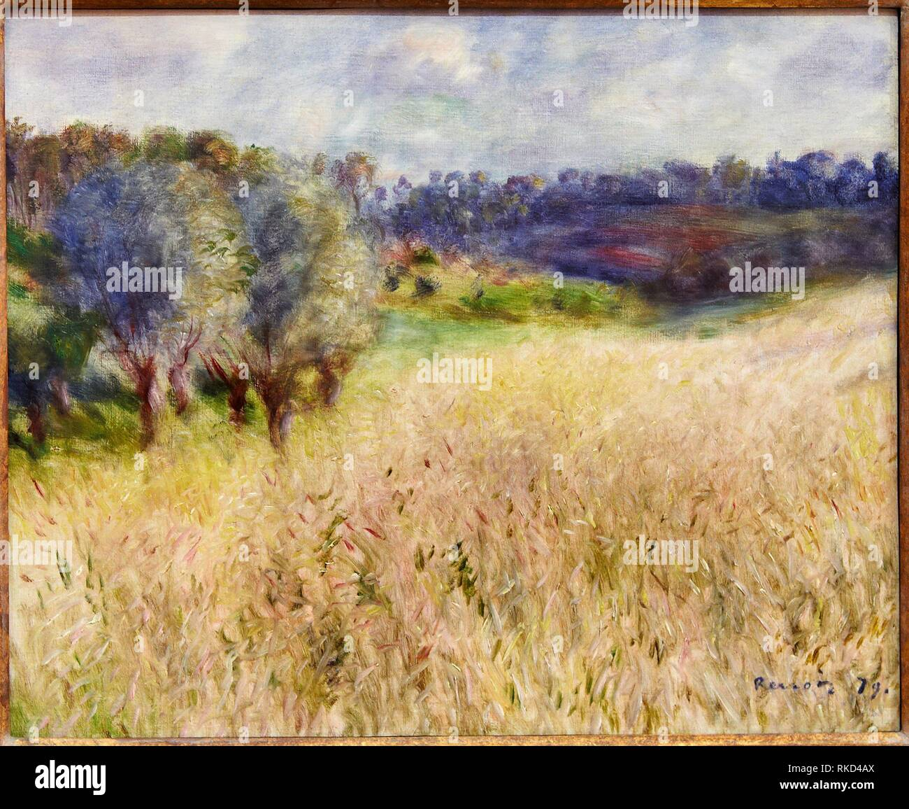 '''Wheat field'', 1879, Pierre-Auguste Renoir, Thyssen Bornemisza Museum, Madrid, Spain - Stock Image