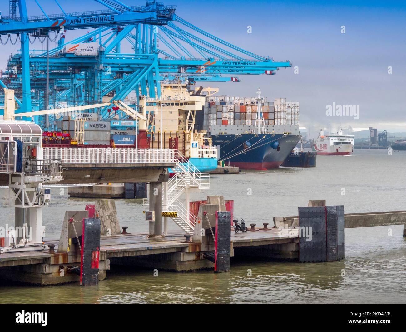 Spain, Andalusia, Cadiz province, Algeciras harbour, Containership - Stock Image