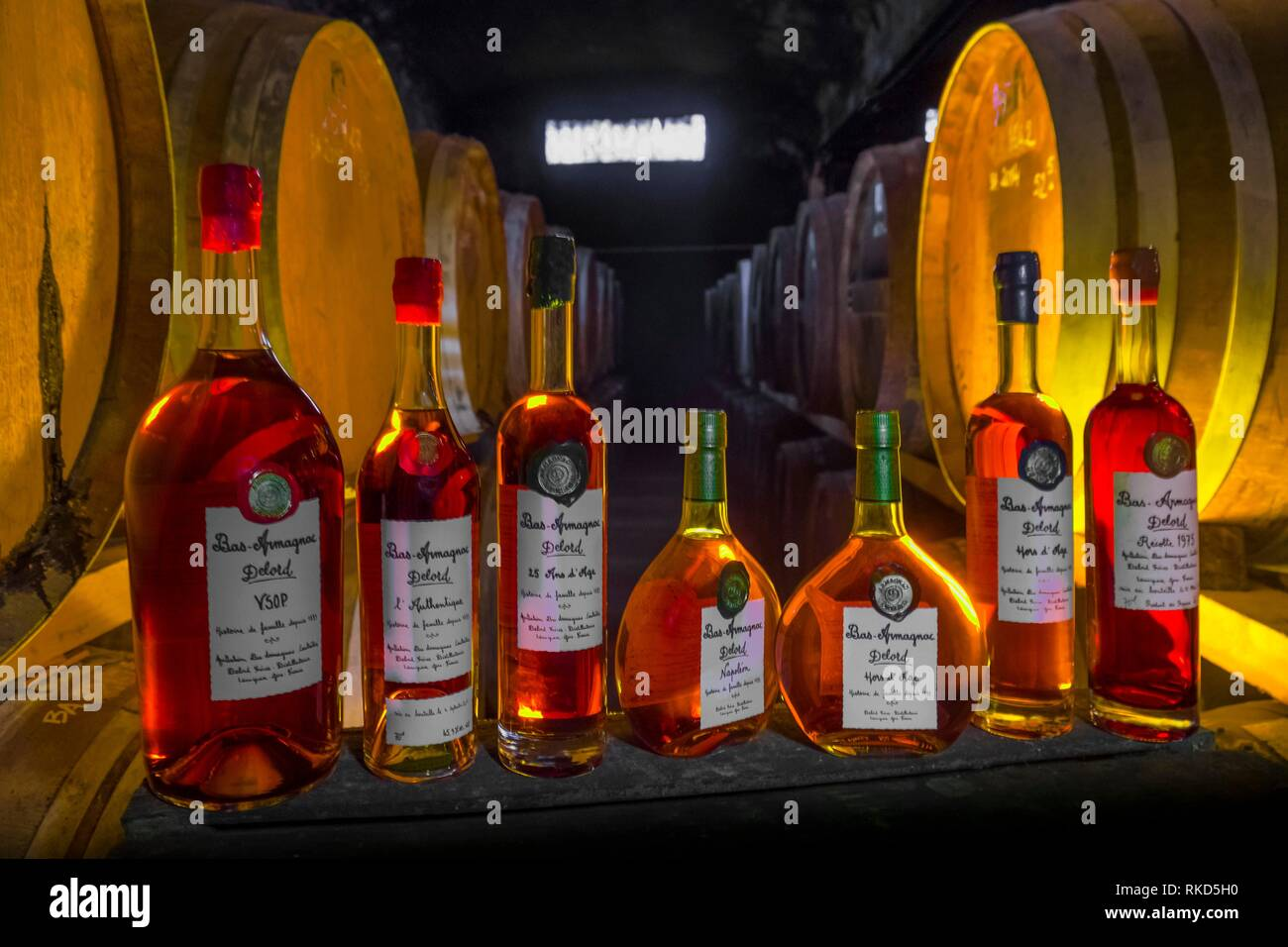 France, Occitanie, Gers, at the ''Armagnac Delord Estate'' at Lannepax. the many Armagnacs from the Estate. - Stock Image