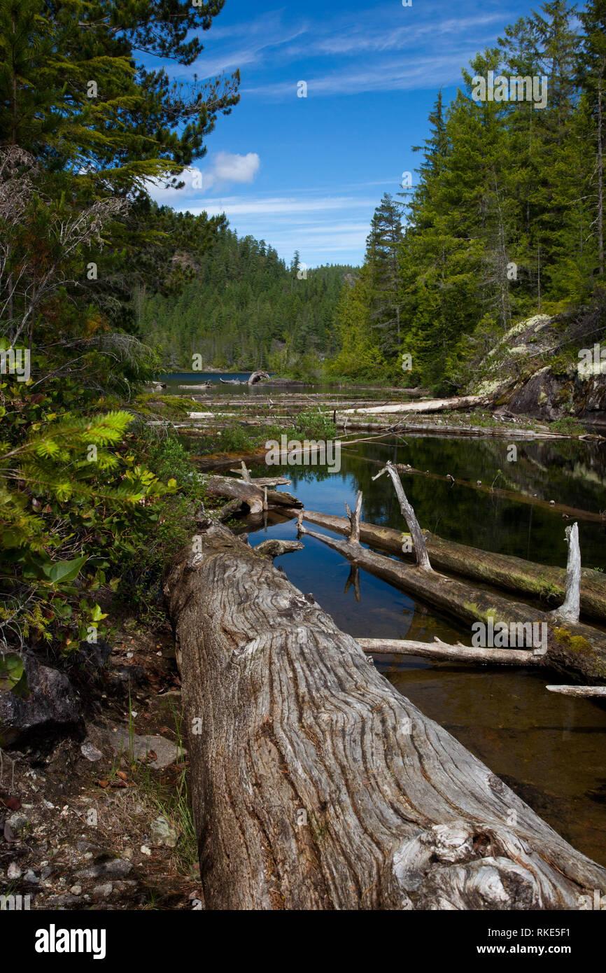 Teakerne Arm, Desolation Sound, British Columbia, Canada - Stock Image