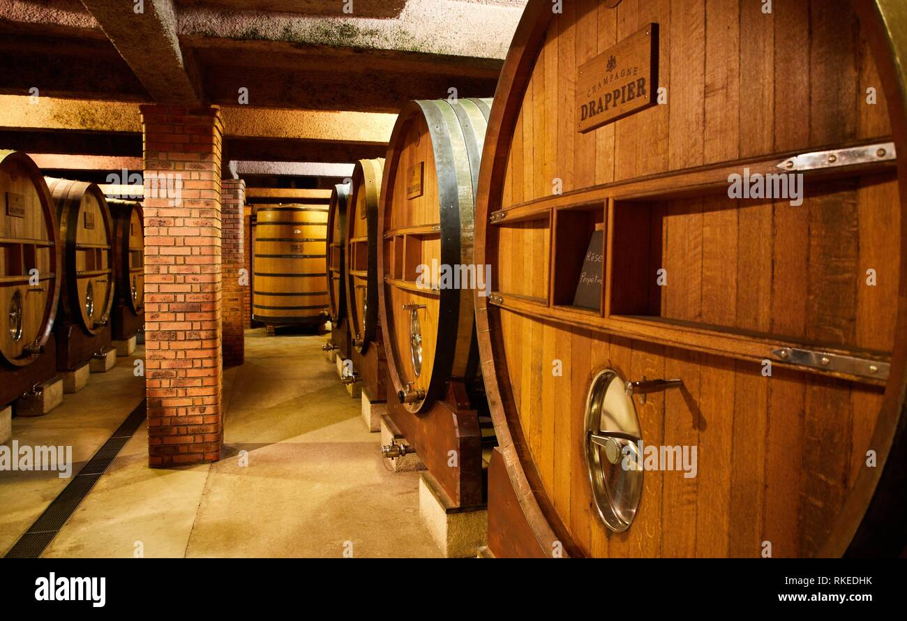 Les Caves Cisterciennes, Cellar, Champagne Drappier, Urville, Aube, Champagne-Ardenne, France, Europe - Stock Image