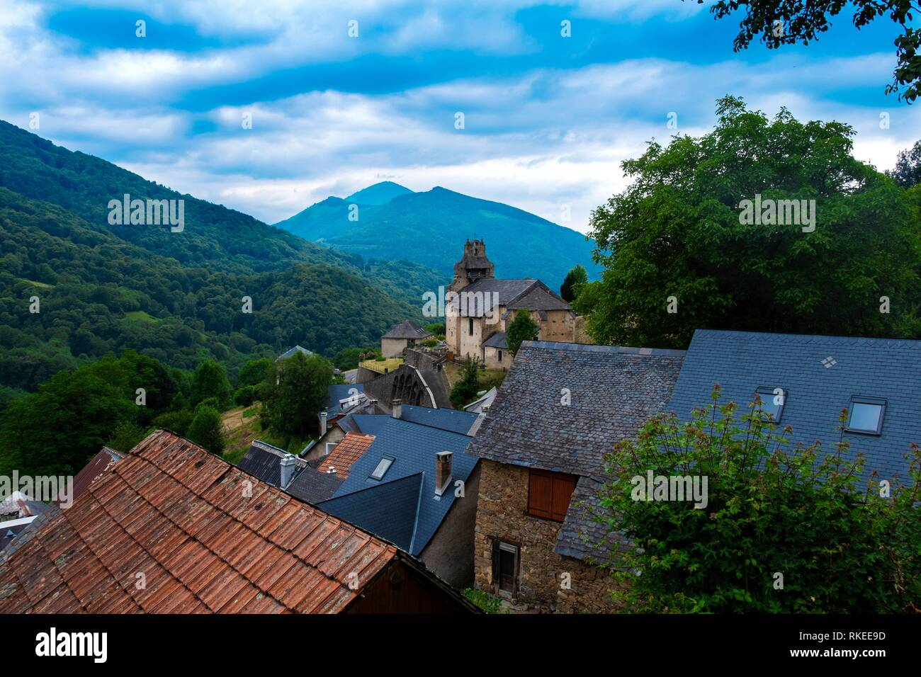 France, Occitanie,Ariege, Bethmale valley famed for it's cheeses. Stock Photo