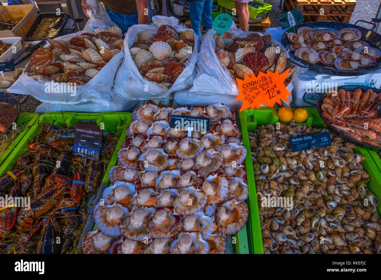 France, Nouvelle Aquitaine, Dordogne, sea food on a fishmonger stand at Bergerac. - Stock Image