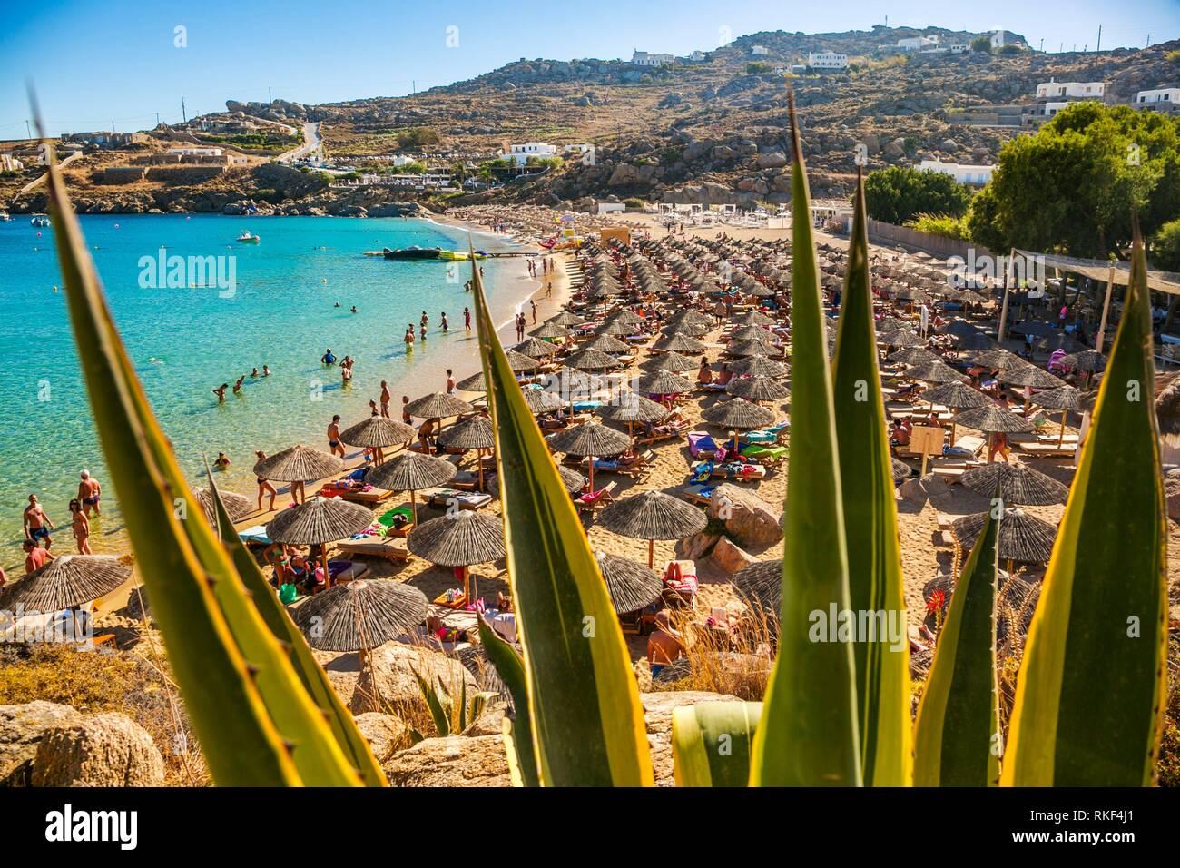 Super Paradise Beach. Mykonos Island. Ciclades Islands. Greece. - Stock Image