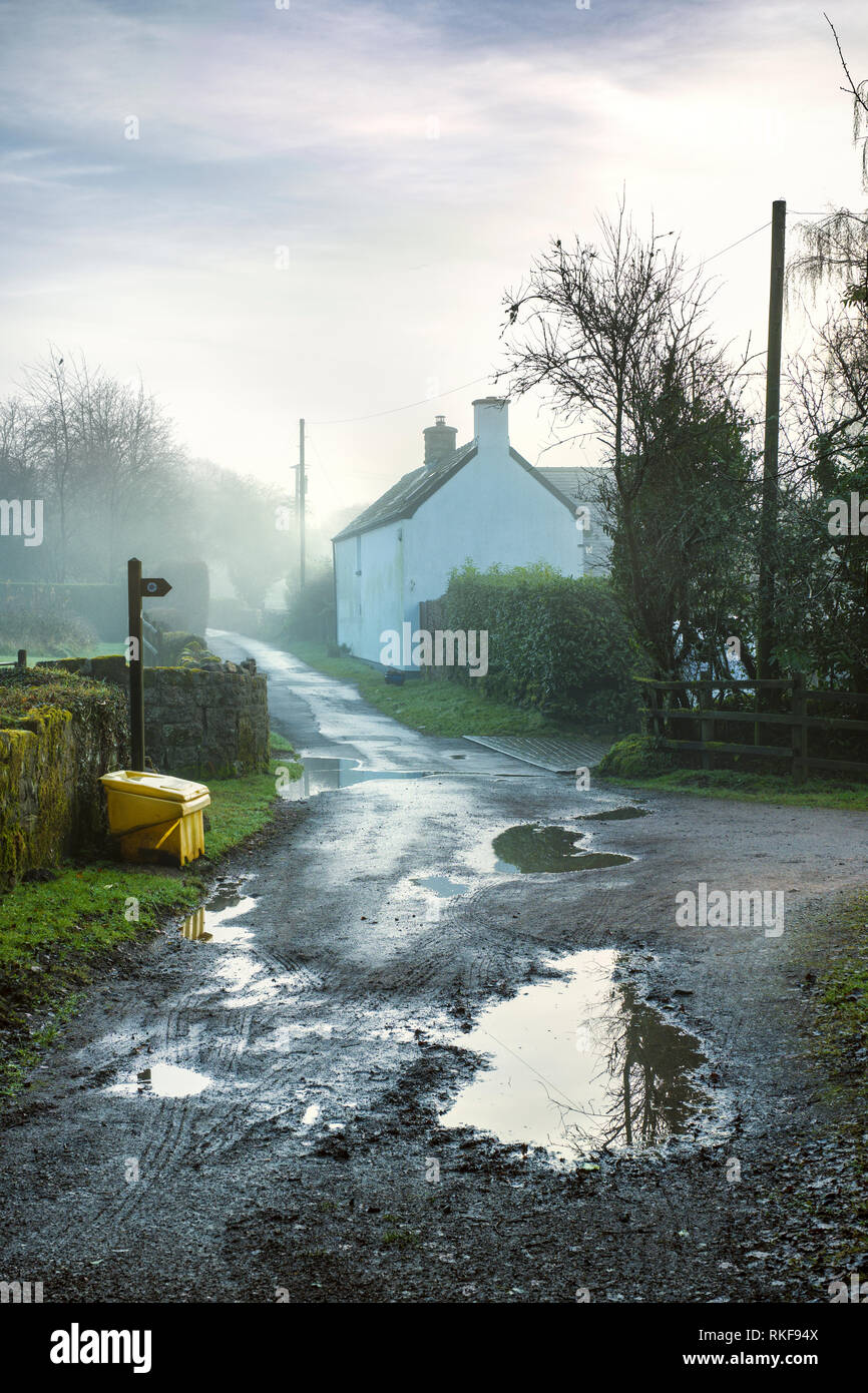 A white painted cottage by a quiet country lane in Wales. - Stock Image