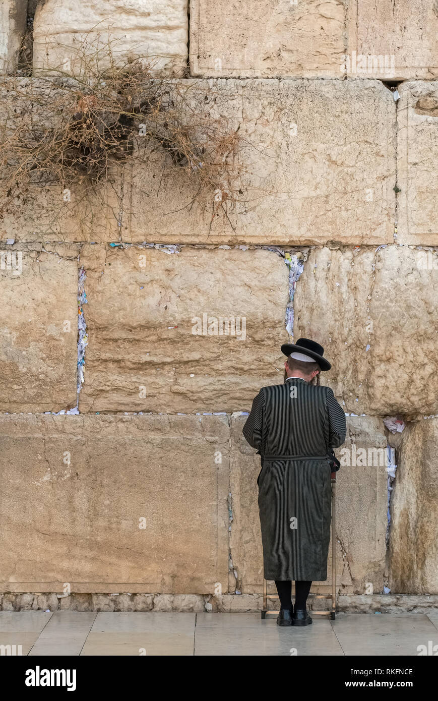 Religious orthodox jew praying at the Western wall in Jerusalem - Stock Image
