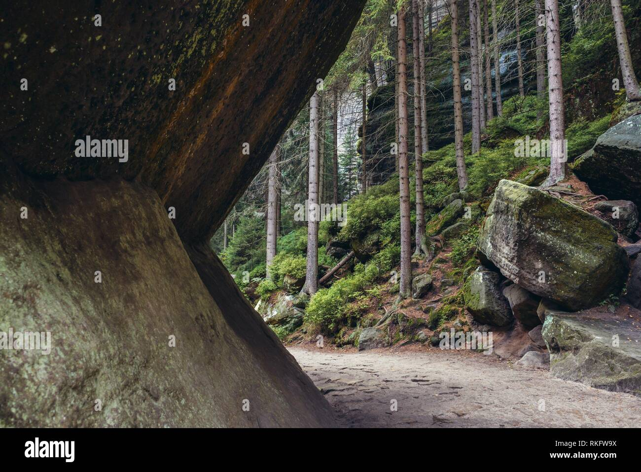 National Nature Reserve Adrspach-Teplice Rocks near Teplice nad Metuji town in Bohemia region, Czech Republic. - Stock Image