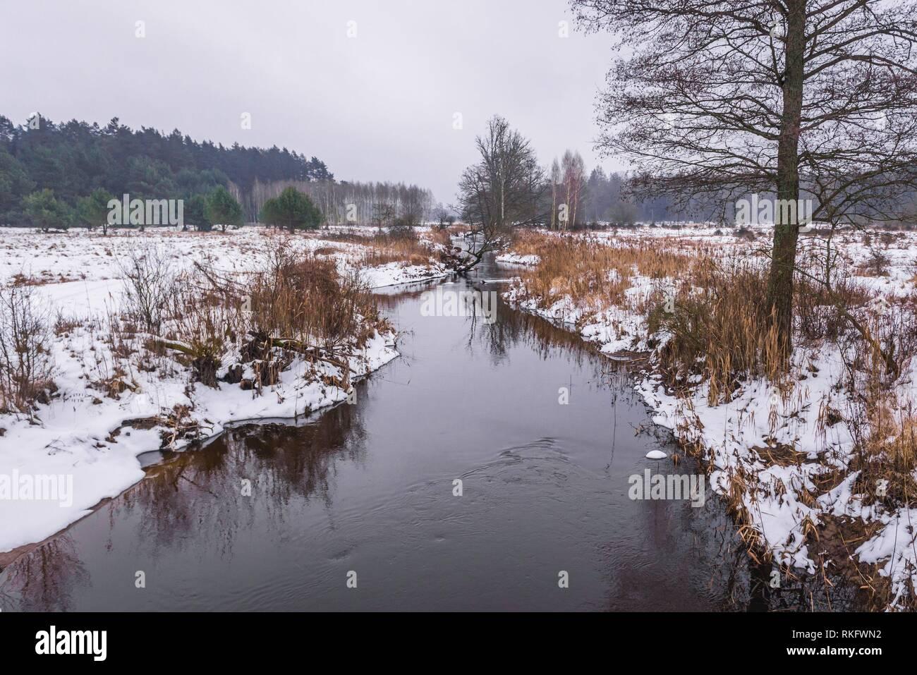 Narewka river, tributary of the Narew river in Gruszki village within Hajnowka County, Podlaskie Voivodeship of Poland. - Stock Image