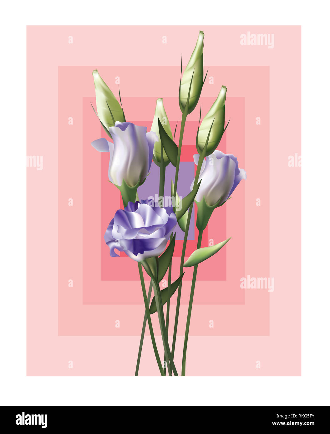 Beautiful purple Lisianthus with square pattern background - Stock Image