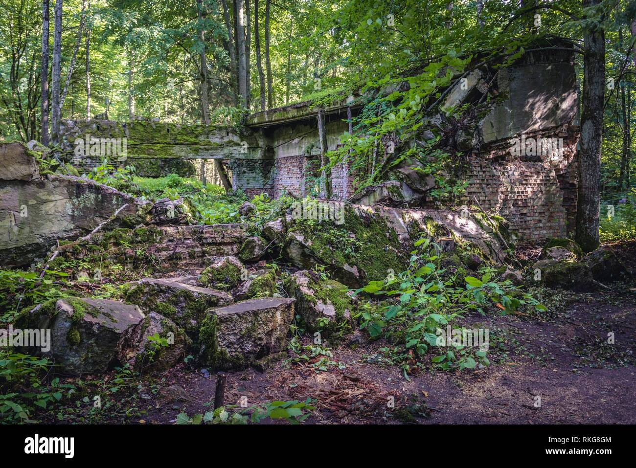 Collapsed building in Wolf's Lair - the headquarters of Adolf Hitler and the Nazi Supreme Command of Armed Forces in WW2 near Gierloz village, Poland. Stock Photo