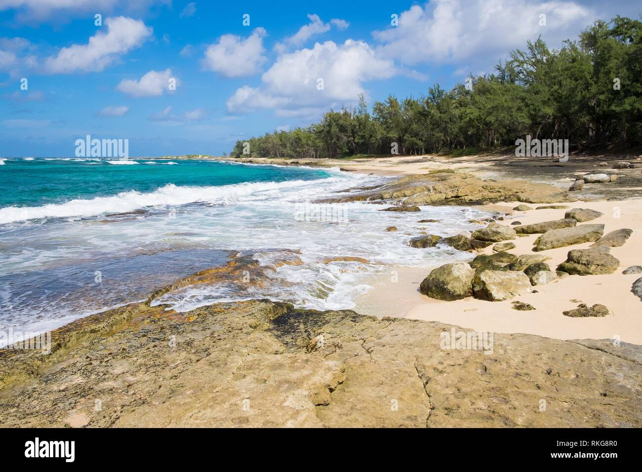 Beach and Pacific Ocean at Turtle Bay Oahu Hawaii. - Stock Image