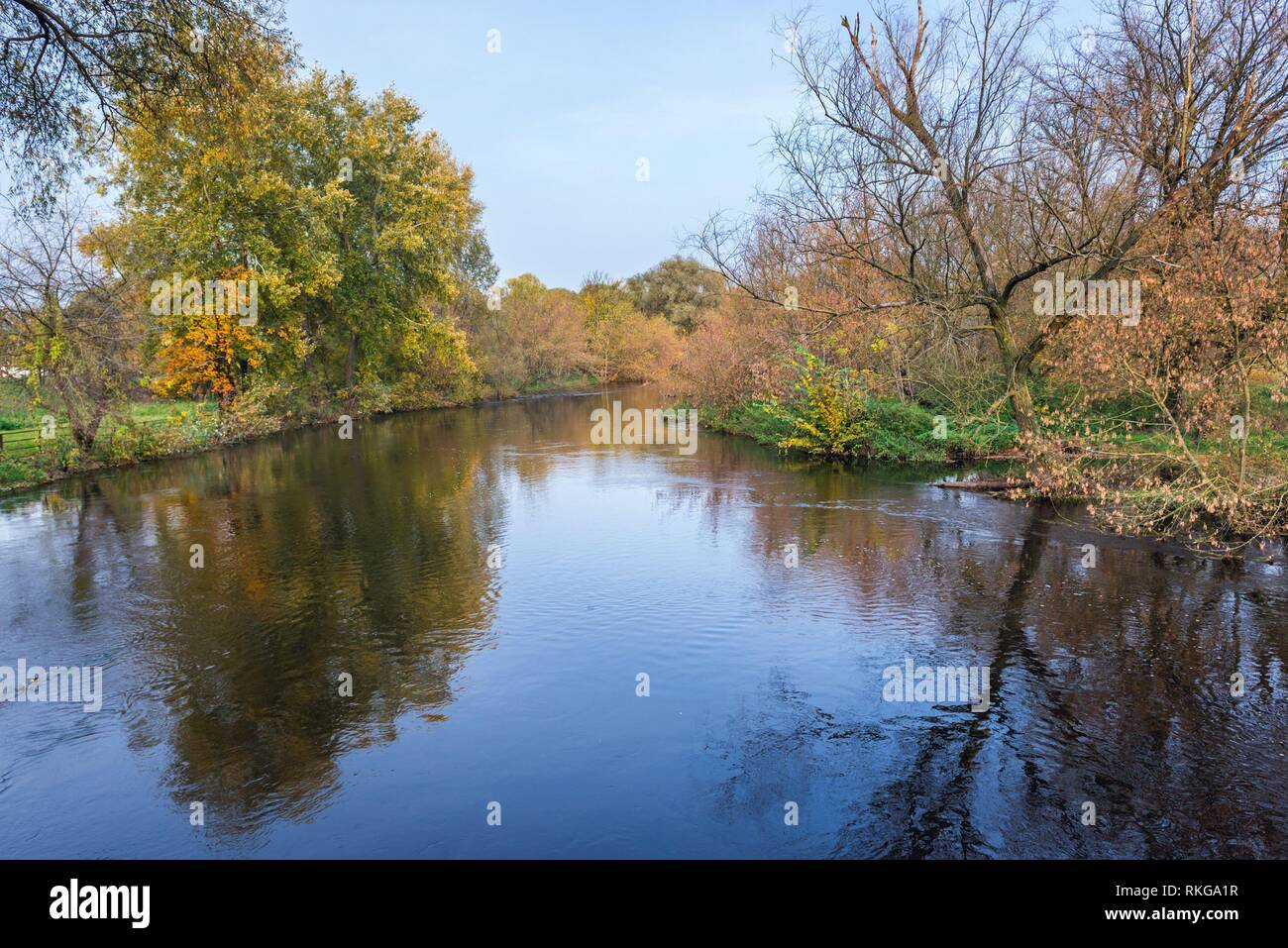 Bzura River in Witkowice village, Sochaczew County in Masovian Voivodeship of Poland. - Stock Image