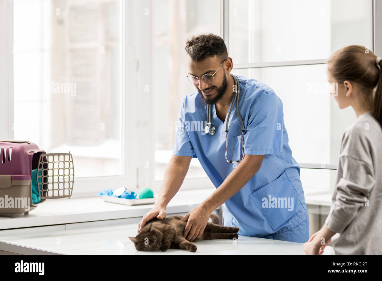 Visiting veterinarian - Stock Image