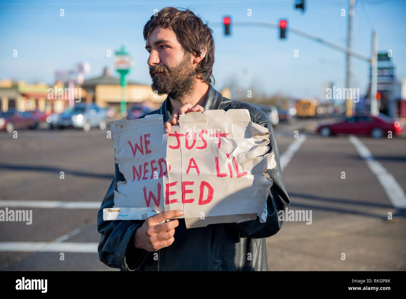 ALBANY, OR - DECEMBER 13, 2017: Transient male holds a cardboard sign that says we just need a lil weed on a corner in Albany Oregon where marijuana - Stock Image