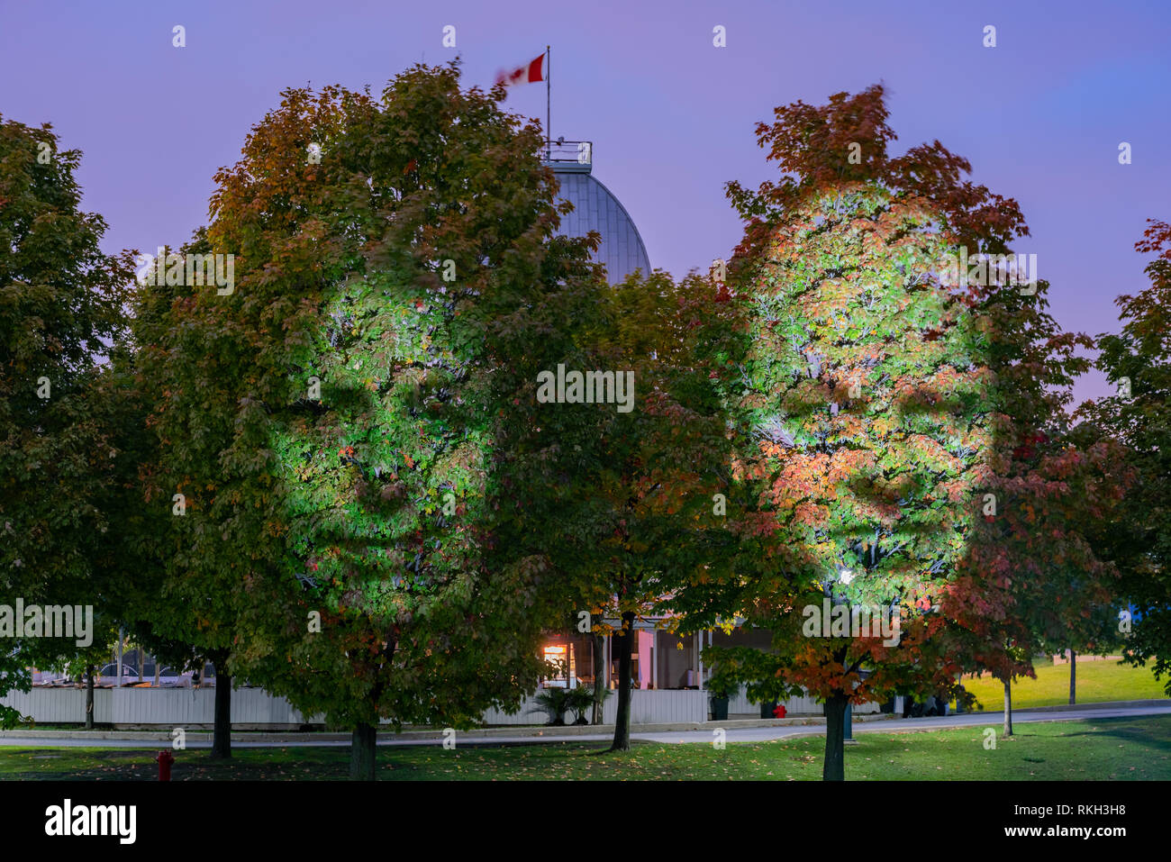 Face Shape Light Up On The Maple Tree At Montreal Canada Stock