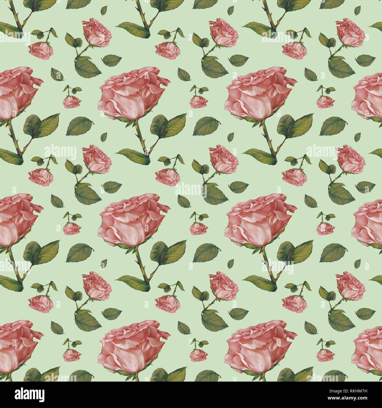 Wallpaper Wrapping Paper Seamless Pattern Old Pink Roses