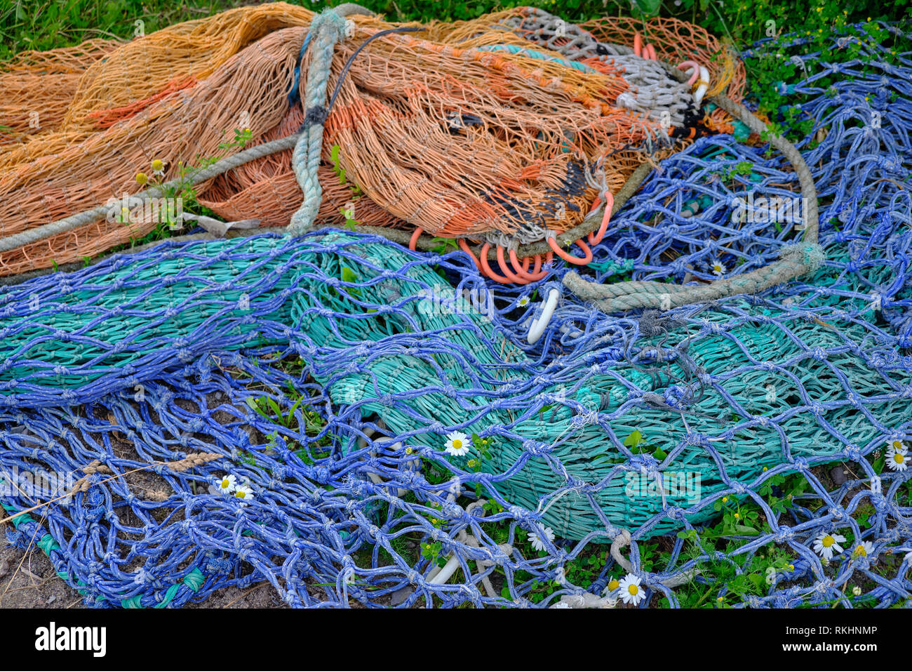 Orange and blue colorful fishing nets lying on grass and flowers peeking through. Both are aged and faded, tossed aside. daylight picture on grey day. - Stock Image