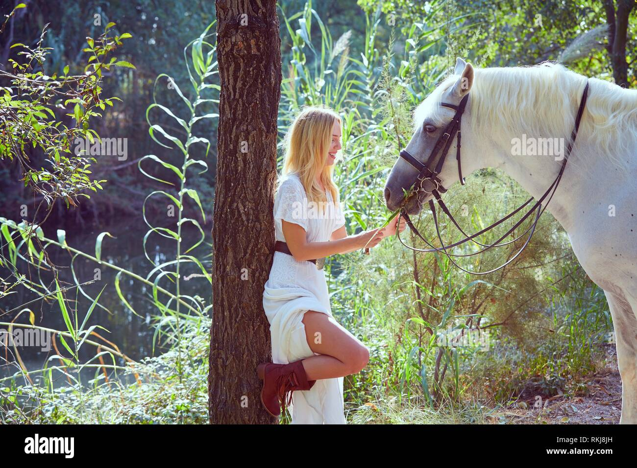 Blond girl feed grass to her white horse in a magic light forest near river. Stock Photo
