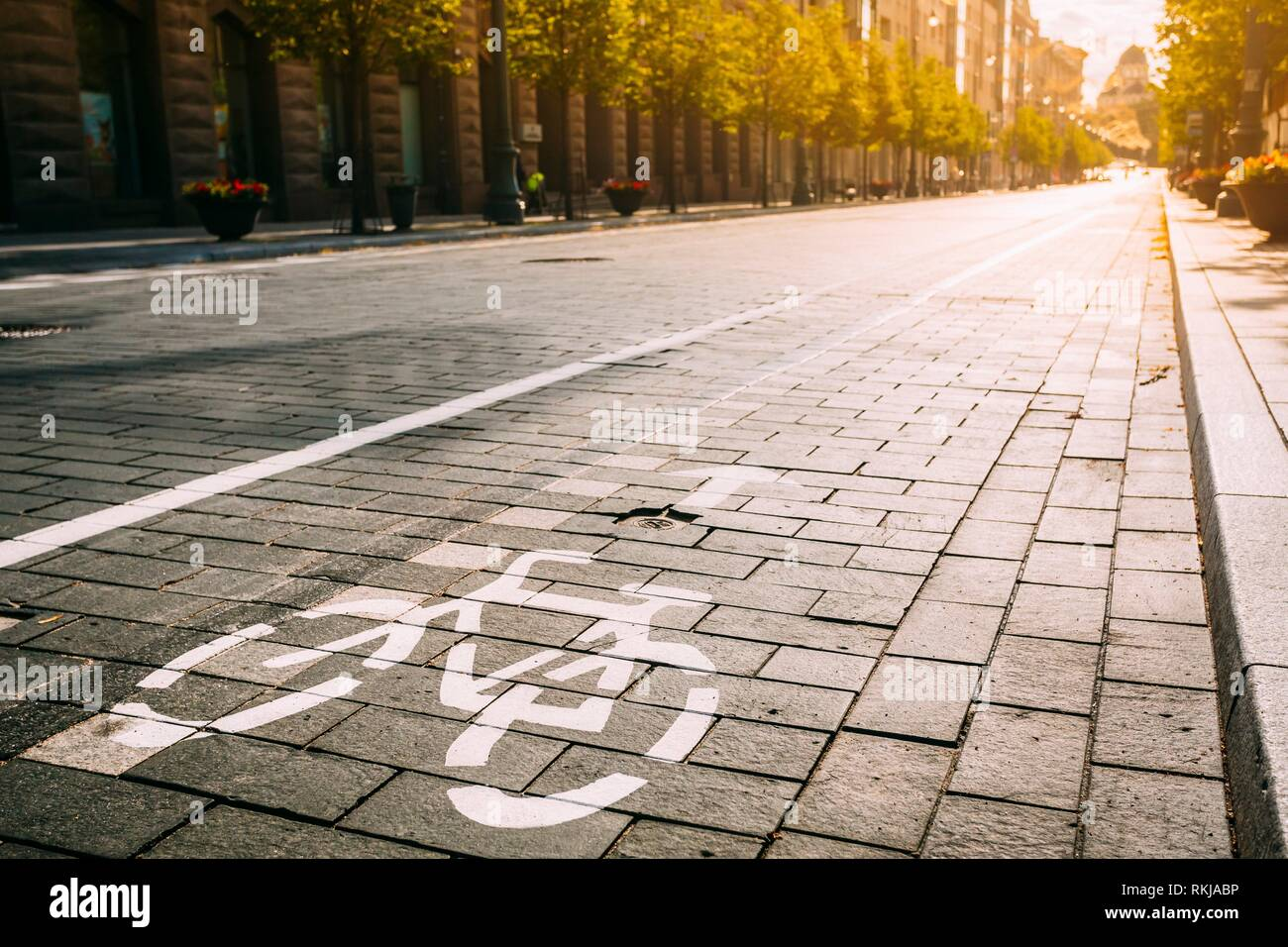Bycycle Road Sign, Road Marking Of Bicycle Path Along Avenue Or Street In City In A Sunny Morning Or Evening At Sunset Or Sunrise. Concept Of Cycling Stock Photo
