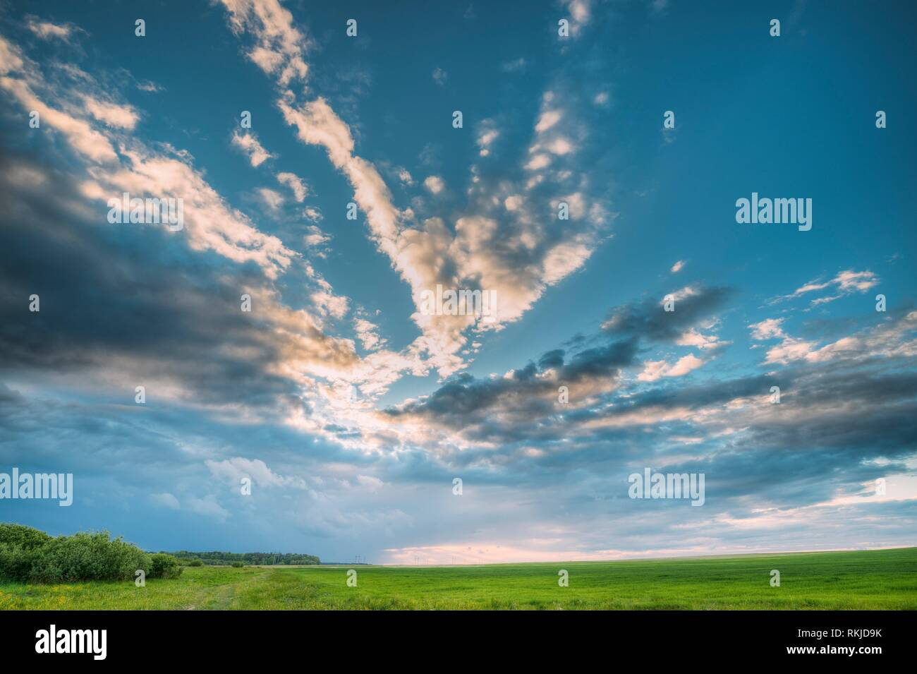 Countryside Rural Field Landscape Under Scenic Spring Blue Cloudy Dramatic Sky With White Fluffy Clouds. Skyline. Agricultural Landscape Of Green - Stock Image