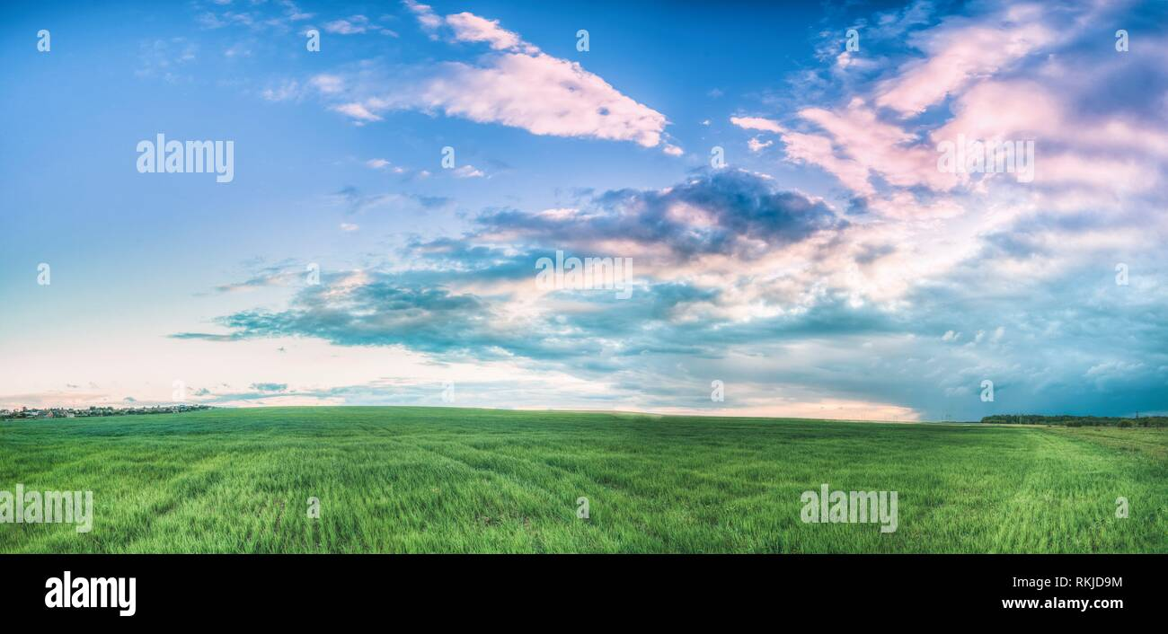 Countryside Rural Field Landscape Under Scenic Spring Blue Cloudy Dramatic Sky With White Fluffy Clouds. Skyline. Panoramic Agricultural Landscape Of Stock Photo