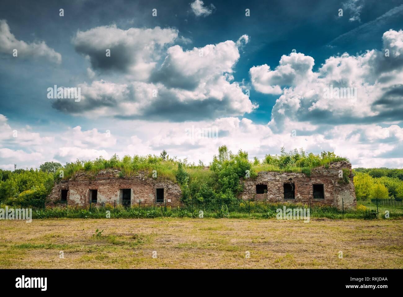 Brest, Belarus. Ruins Of The Bernardine Monastery In Brest In Sunny Summer Day. - Stock Image