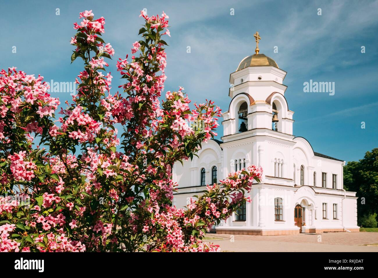 Brest, Belarus. Belfry, Bell Tower Of Garrison Cathedral St. Nicholas Church In Memorial Complex Brest Hero Fortress In Sunny Summer Day. - Stock Image