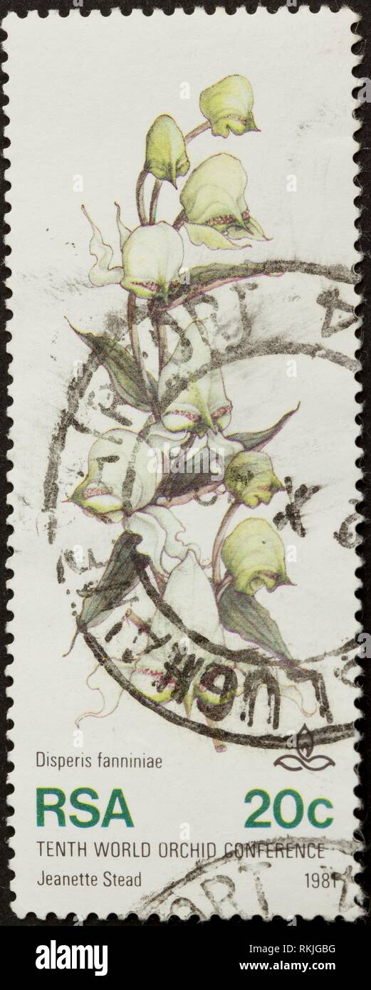 RSA - 1981: Stamp printed in the Republic of South Africa shows a picture of an orchid, 1981. - Stock Image
