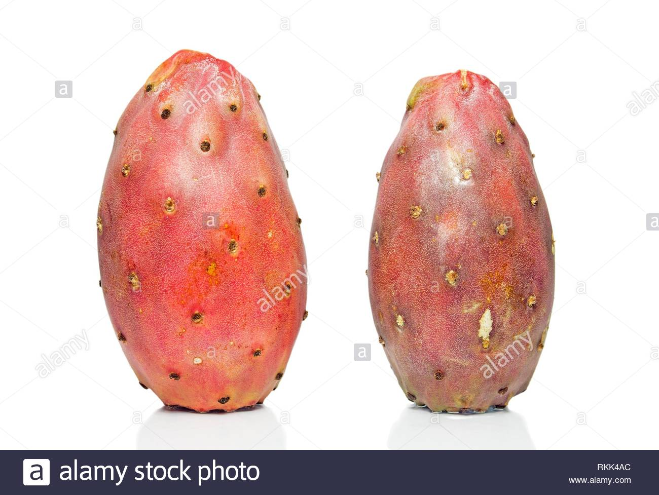 cactus fruit on a white background. - Stock Image