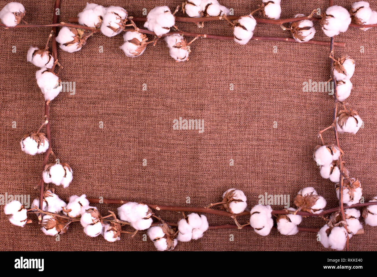 Flower design with fluffy dried cotton bolls over rough brown burlap. Top view, copy space, greeting card - Stock Image