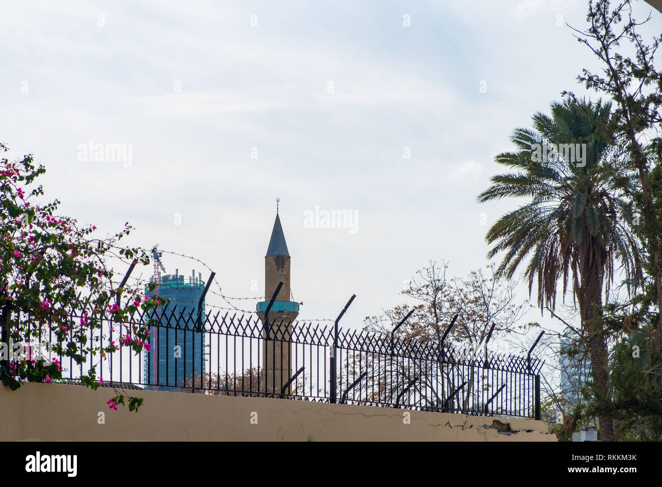Contrasting view of a palm tree, a mosque and a sky scraper viewed from the historic centre of Nicosia, Cyprus - Stock Image