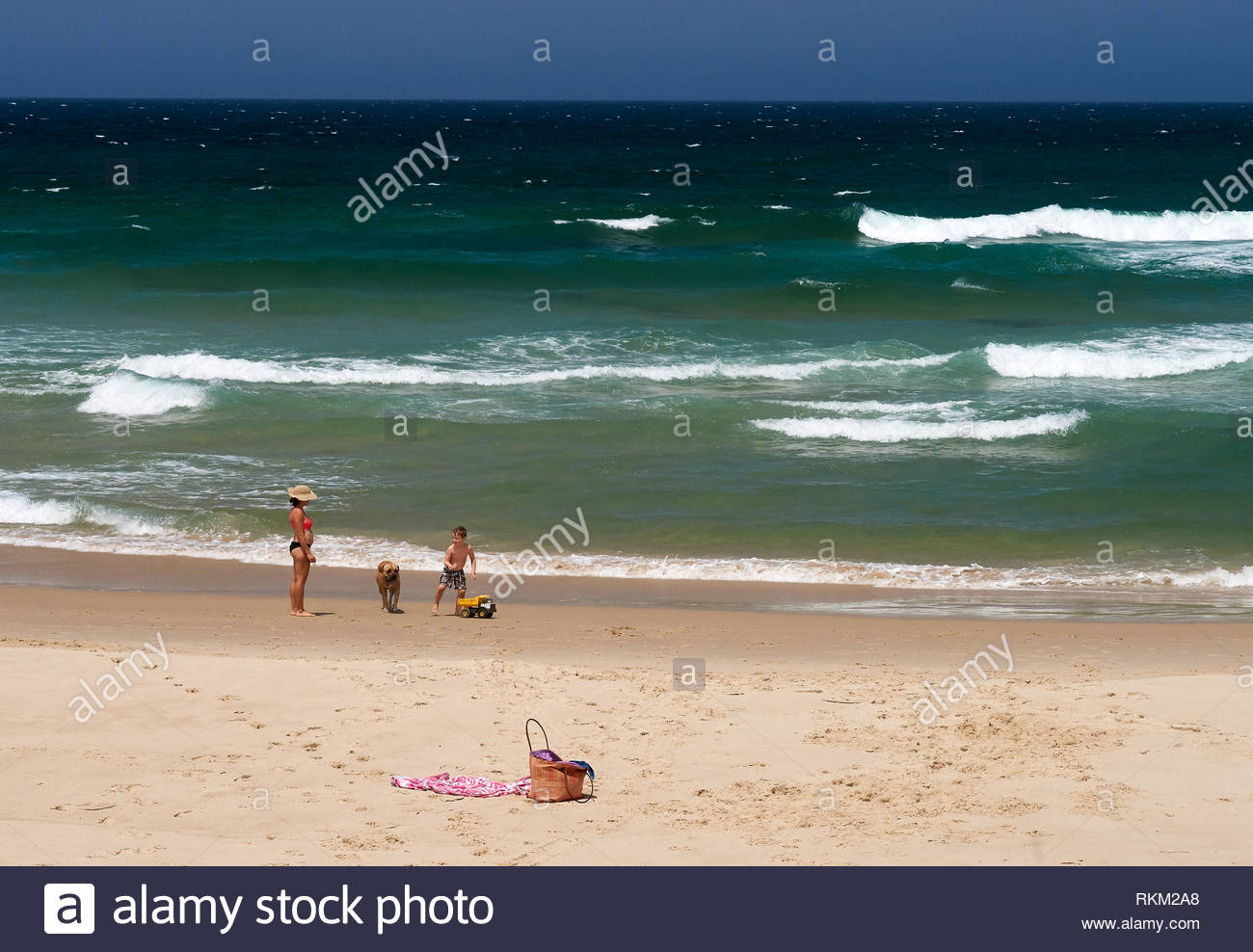 A mother watches over her son, who's playing happily on the beach with their large brown dog, and a yellow toy dump-truck; blue-sky, and ocean behind. - Stock Image