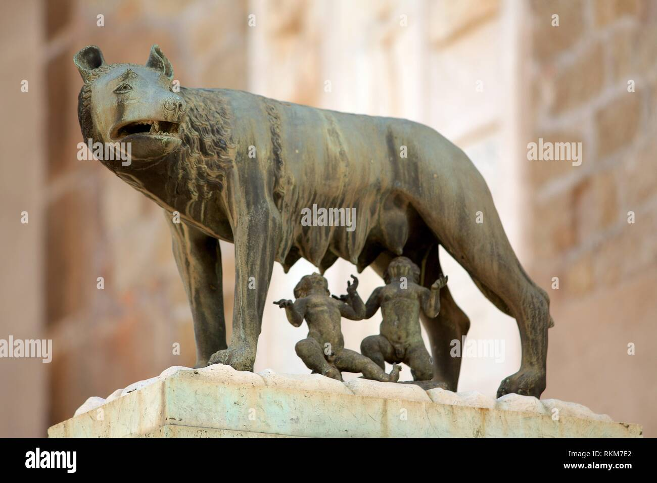 Sculpture of the capitoline she-wolfe of the legend of Romulus and remus in the Piazza Campidoglio. Rome. Italy. - Stock Image