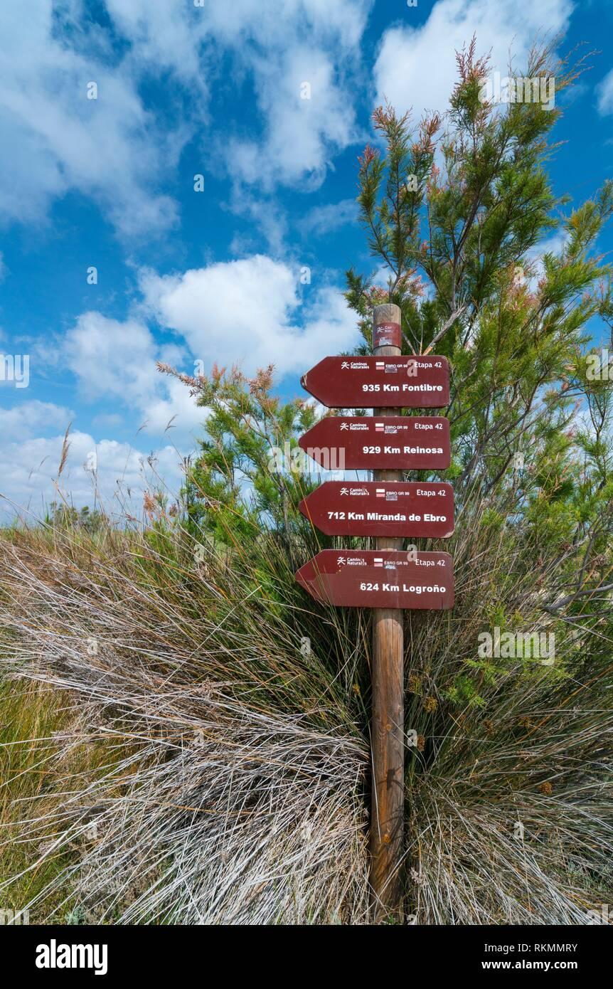 The Ebre Delta, The Ebre Delta Natural Park, Terres de l'Ebre, Tarragona, Catalonia, Spain. Stock Photo
