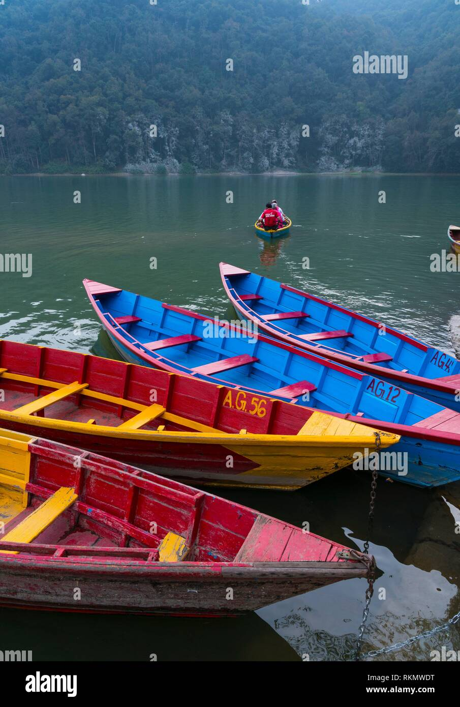 Rowing boats, Phewa Lake, Pokhara, Nepal, Asia. - Stock Image