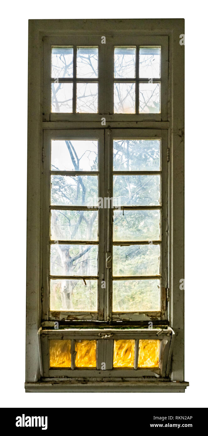 Large vintage window of an abandoned building, spooky forest can be seen behind the glass. Isolated on white - Stock Image