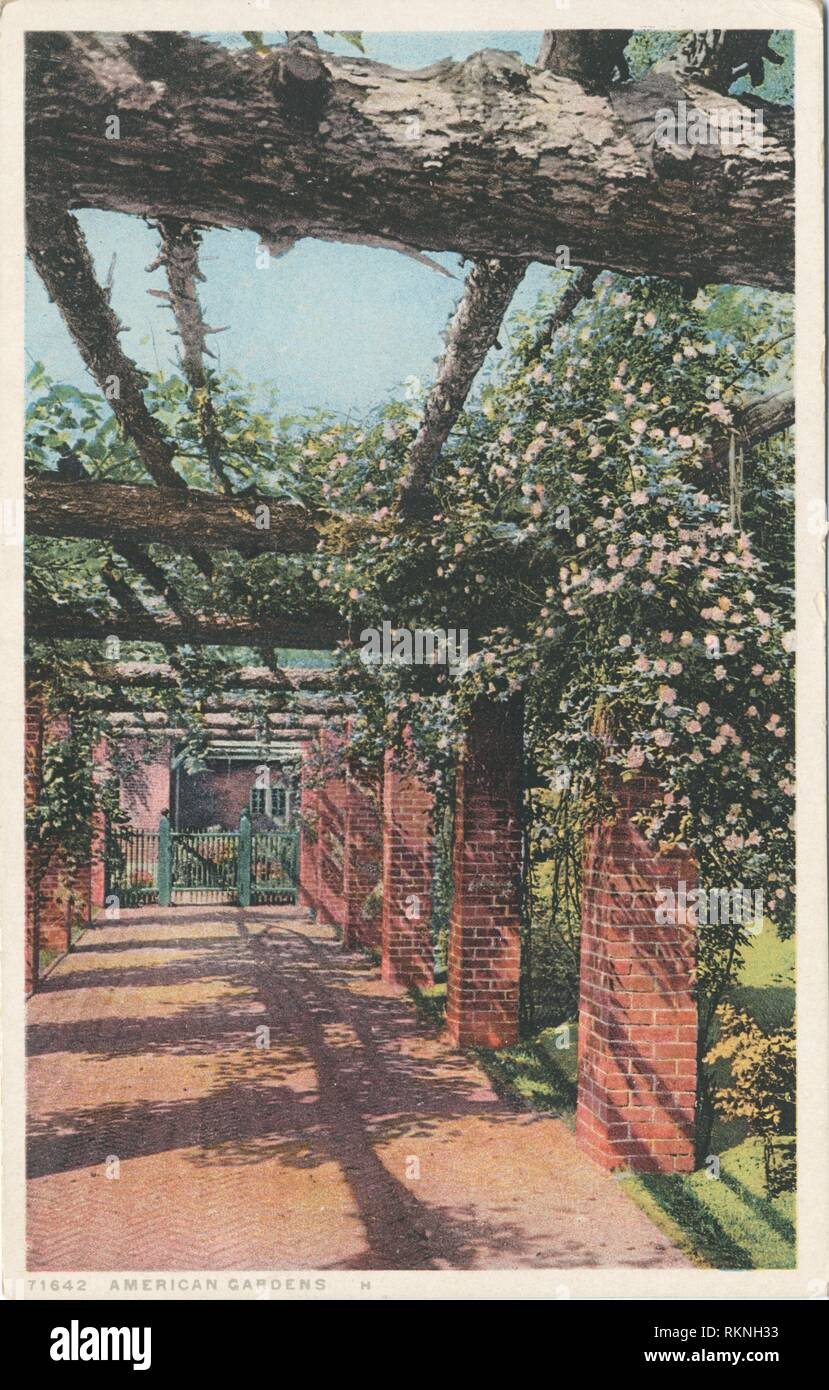 American Garden H (or New England). Detroit Publishing Company postcards 71000 series. Date Issued: 1898 - 1931 Place: Detroit Publisher: Detroit - Stock Image