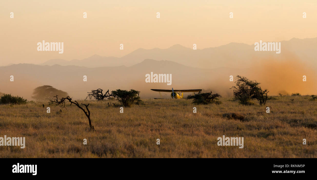 A 1930's Waco biplane flying at dawn over Laikipia, taking off on the dirt strip, wide view format, Lewa Wilderness,Lewa Conservancy, Kenya, Africa - Stock Image