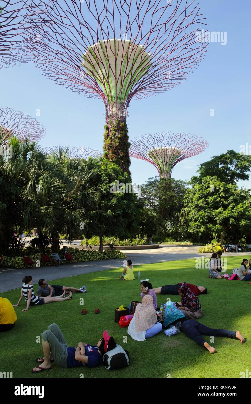 People laying on the grass in front of the iconic tree-like vertical gardens with large canopies, Supertree Grove, Botanic Garden, Garden by the bay, - Stock Image