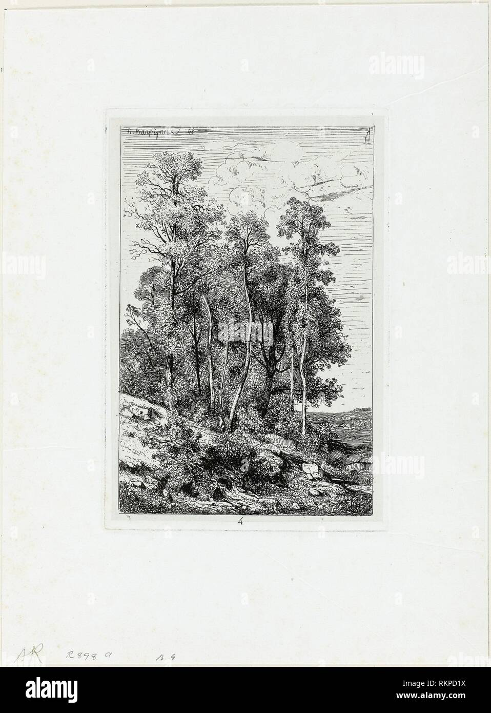 Birches and Oaks - 1848, printed 1849 - Henri Joseph Harpignies French, 1819-1916 - Artist: Henri Joseph Harpignies, Origin: France, Date: 1848, - Stock Image