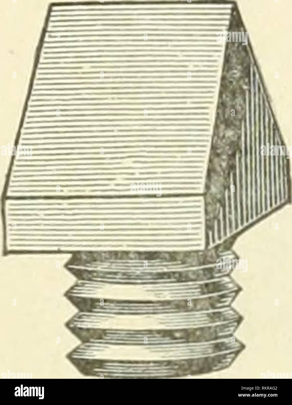 """. The art of horse-shoeing : a manual for farriers. Horseshoeing. -Steel sharps, screw. worked into each hole to clear the thread. One great objection to this method is that as the shoe wears, it becomes thiniier, and if much worn, the shank of the """"sharp"""" may be too long, and when screwed home, cause pressure upon the hoof and consequent lameness. To guard against this, steel """"blanks"""" are used to pre- serve the holes, and when a frost comes, they are removed and the """" sharps """" put in. The blanks vary in height, and, of course, those least in height are best for t - Stock Image"""