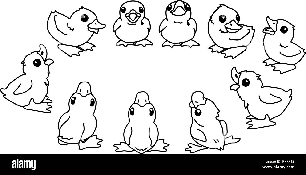 vector cartoon animal clipart cute little duckling - Stock Image