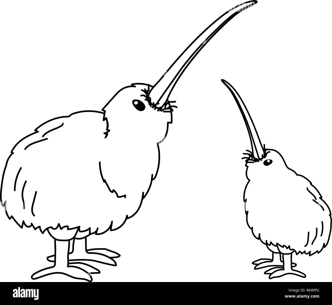 vector cartoon animal clipart wingless kiwi bird - Stock Image