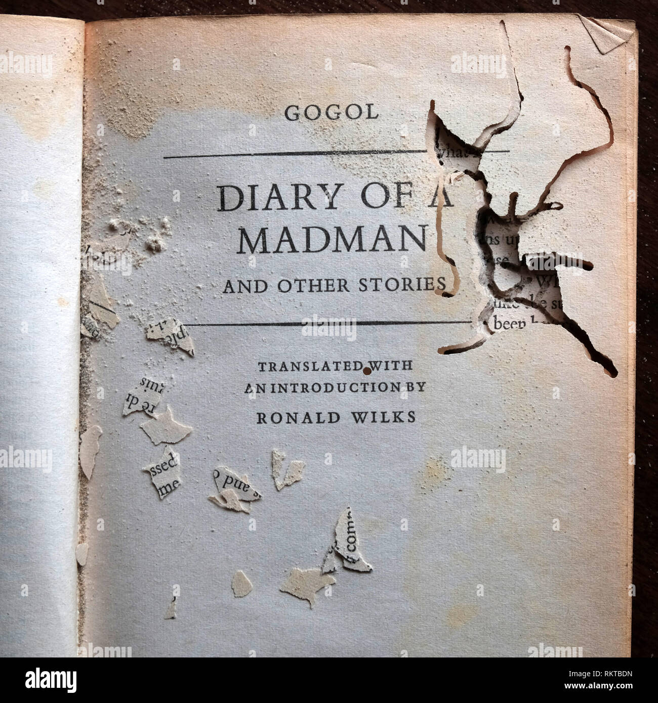 Bookworm infested copy of Nikolai Gogol's 'Diary of a Madman' - Stock Image